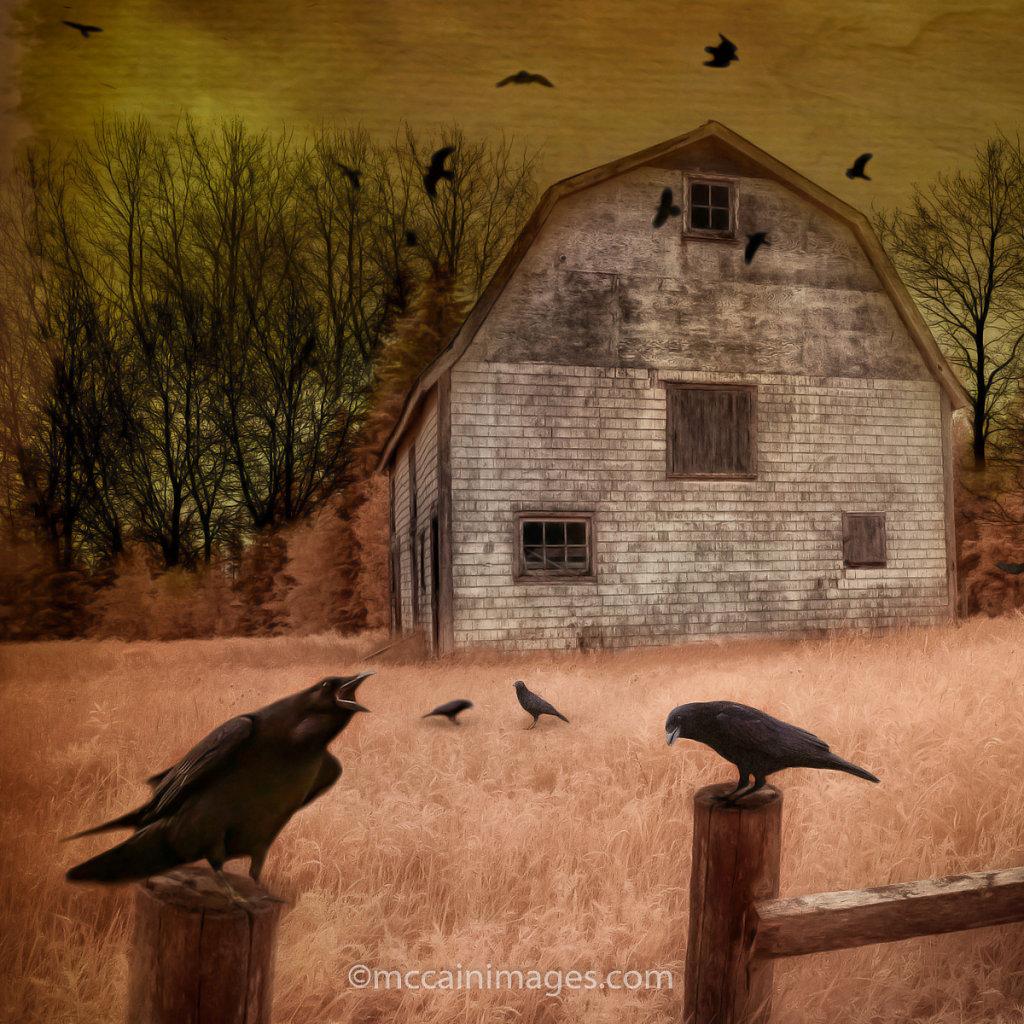 Raven's Last Call